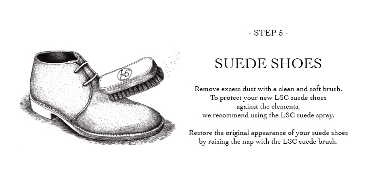 Picture for category Shoe Care