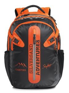 Picture of SKYBAGS Strider 01 Backpack Grey
