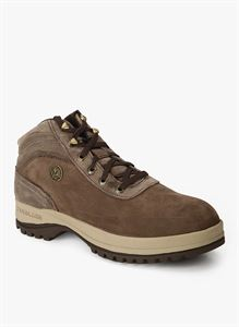 Picture of Woodland 1487114 Brown