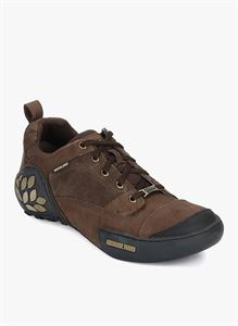 Picture of Woodland 1868115 Brown