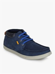 Picture of  Woodland 2174116 DROYAL BLUE